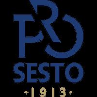 Pro Sesto 2013 Italian football club