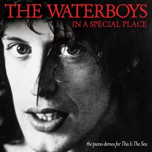 <i>In a Special Place – The Piano Demos for This Is the Sea</i> 2011 compilation album by The Waterboys