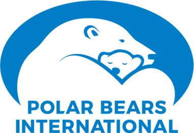 Polar Bears International Wikipedia