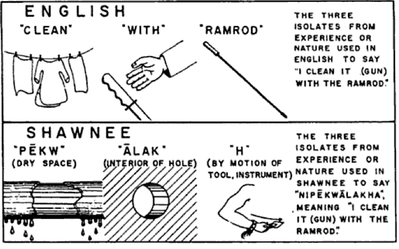 "Whorf's illustration of the difference between the English and Shawnee gestalt construction of cleaning a gun with a ramrod. From the article ""Science and Linguistics"", originally published in the MIT Technology Review, 1940."