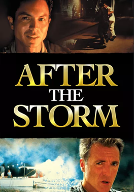 Picture of a movie: After The Storm