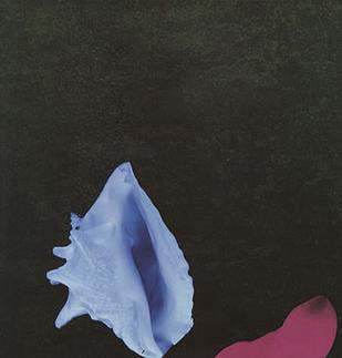 New Order - Touched by the Hand of God single cover