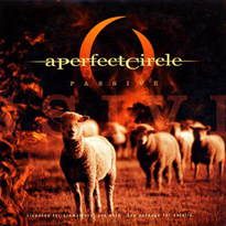 Passive (song) 2005 single by A Perfect Circle