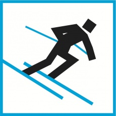 Alpine skiing at the 2012 Winter Youth Olympics