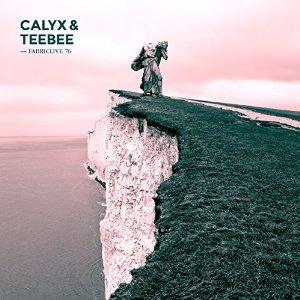 <i>FabricLive.76</i> 2014 compilation album by Calyx & TeeBee