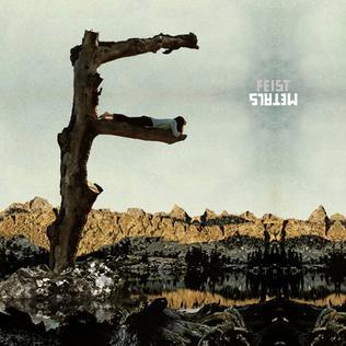 <i>Metals</i> (album) 2011 studio album by Feist
