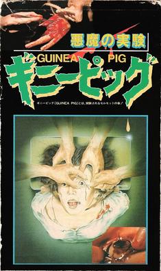 Guinea Pig Devil S Experiment Wikipedia
