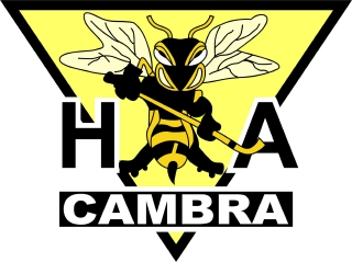 cambra men After a box of explosives was left in a woman's car, two cambria county men have been charged with possessing weapons of mass destruction and related offenses.