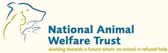 Animal Welfare League Nsw Cats