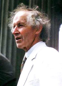 David Morris (actor)