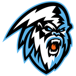 Kootenay Ice ice hockey team