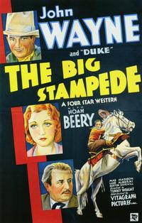Poster of the movie The Big Stampede.jpg