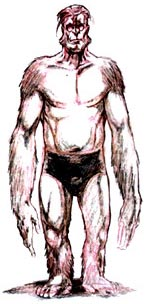 Drawing of an ape-man wearing trunks. He has huge, muscular arms that hang down past his knees.