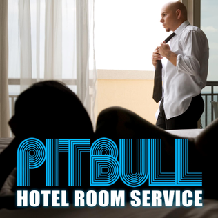 Pit Bull Hotel Room Loud Bass