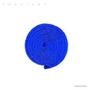 <i>Bermuda Drain</i> 2011 studio album by Prurient