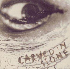 <i>Carved in Stone</i> (Vince Neil album) 1995 studio album by Vince Neil