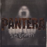 Im Broken Single of Pantera