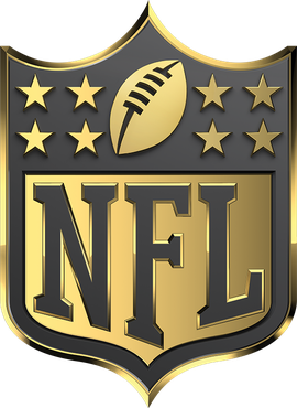 2015 NFL season - Wikipedia