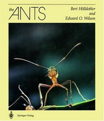 File:The Ants (Wilson Hölldobler book).jpg