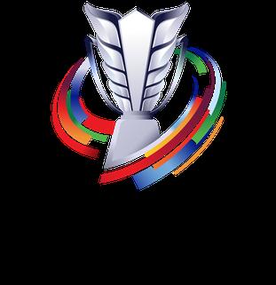AFC Asian Cup Asian association football tournament for mens national teams