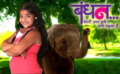 Bandhan (Indian TV series) - Wikipedia