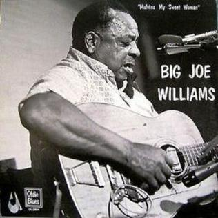 <i>Malvina My Sweet Woman</i> album by Big Joe Williams