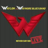 <i>Never Say Die: Live</i> 2000 live album by Waylon Jennings