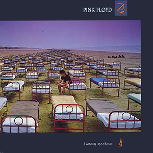 Image result for Pink Floyd - A Momentary Lapse Of Reason (1987)