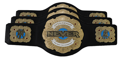 Image result for NEVER 6-Man Tag Team Championships