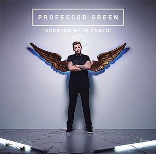 Growing Up in Public (Professor - 12.8KB