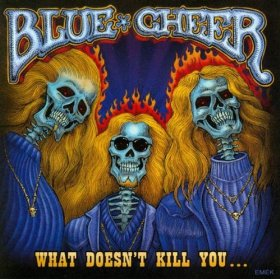 <i>What Doesnt Kill You...</i> (Blue Cheer album) 2007 studio album by Blue Cheer