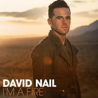 <i>Im a Fire</i> (album) 2014 studio album by David Nail