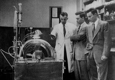 Kidney transplantation - Wikiwand