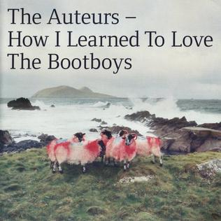 <i>How I Learned to Love the Bootboys</i> 1999 studio album by The Auteurs