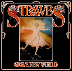 <i>Grave New World</i> 1972 studio album by Strawbs