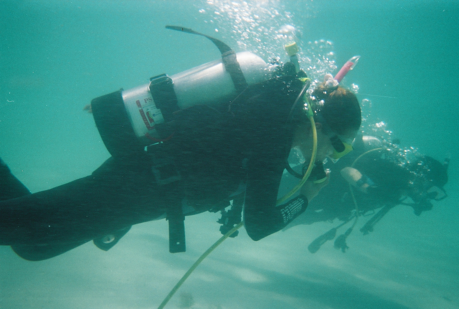Venice Beach Shark Tooth Diving The Best Beaches In World