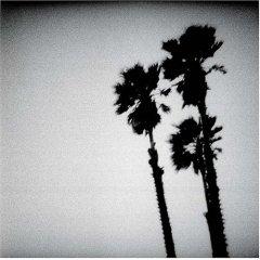 <i>Blackberry Belle</i> 2003 studio album by The Twilight Singers