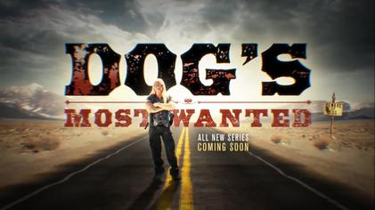 wanted tv series 2016 download