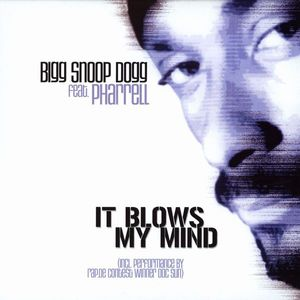 It Blows My Mind 2003 single by Snoop Dogg