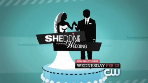 Picture of a TV show: Shedding For The Wedding