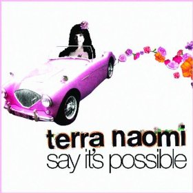 Say Its Possible 2007 single by Terra Naomi