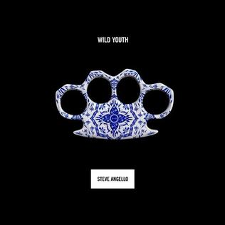 <i>Wild Youth</i> (album) 2016 studio album by Steve Angello