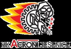 HK Acroni Jesenice