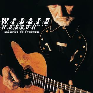 <i>Moment of Forever</i> 2008 studio album by Willie Nelson