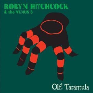 <i>Olé! Tarantula</i> 2006 album by Robyn Hitchcock & the Venus 3