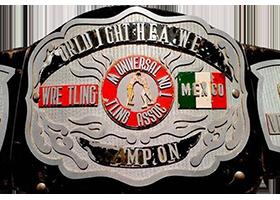 UWA World Light Heavyweight Championship Professional wrestling championship