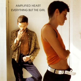 <i>Amplified Heart</i> 1994 studio album by Everything but the Girl