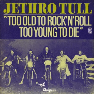 Too Old to Rock n Roll: Too Young to Die (song)