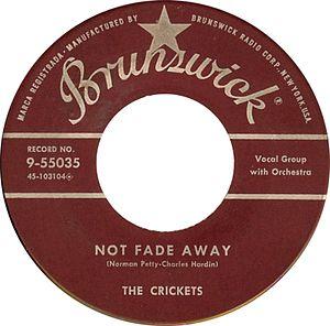 Not Fade Away (song)
