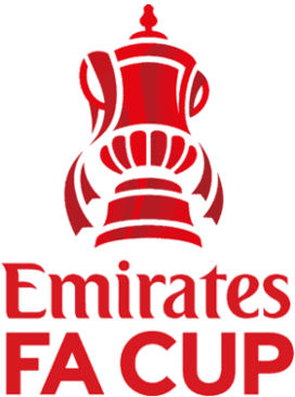 FA Cup Annual knockout football competition in English football